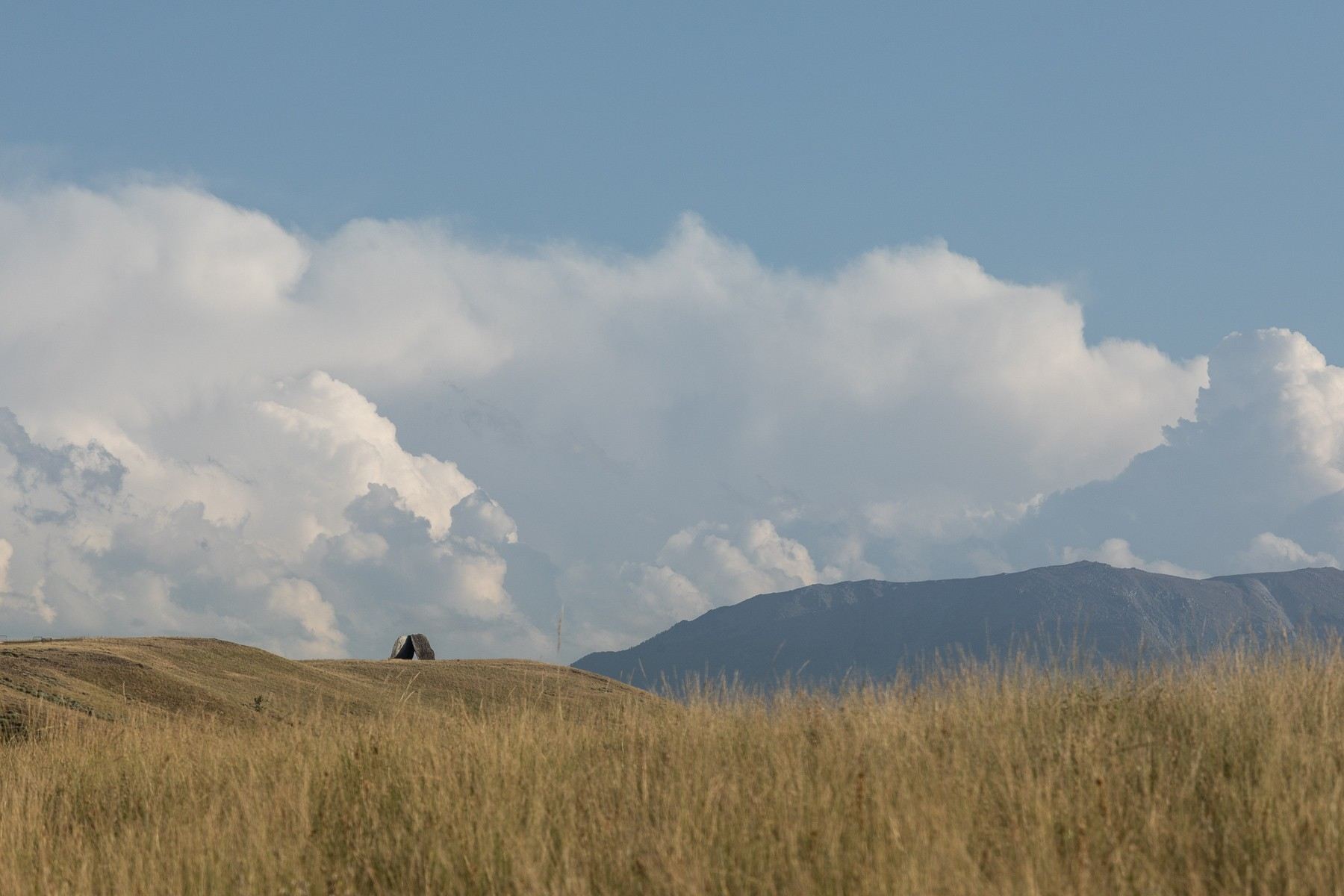 Ensamble Studio_James Florio_Tippet Rise